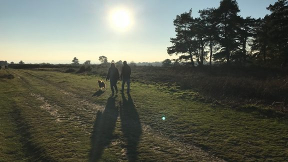 Weald Area of Outstanding Natural Beauty