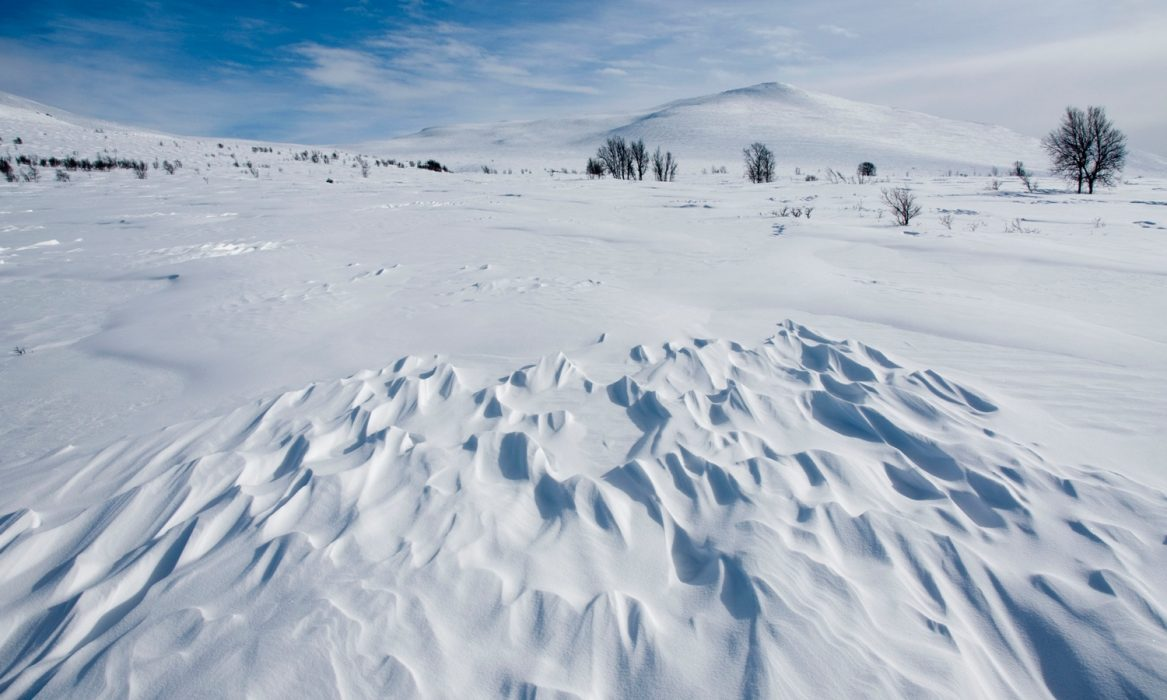 Beautiful photo opportunities, even in difficult skiing conditions!