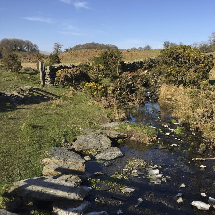 Near the Dales Way, Windermere Cumbria