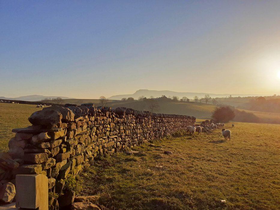 Yorkshire Dales at dawn