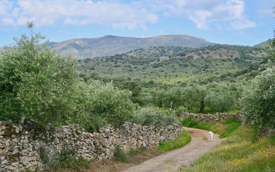 Views of the Sierra de Montanche in Extremadura