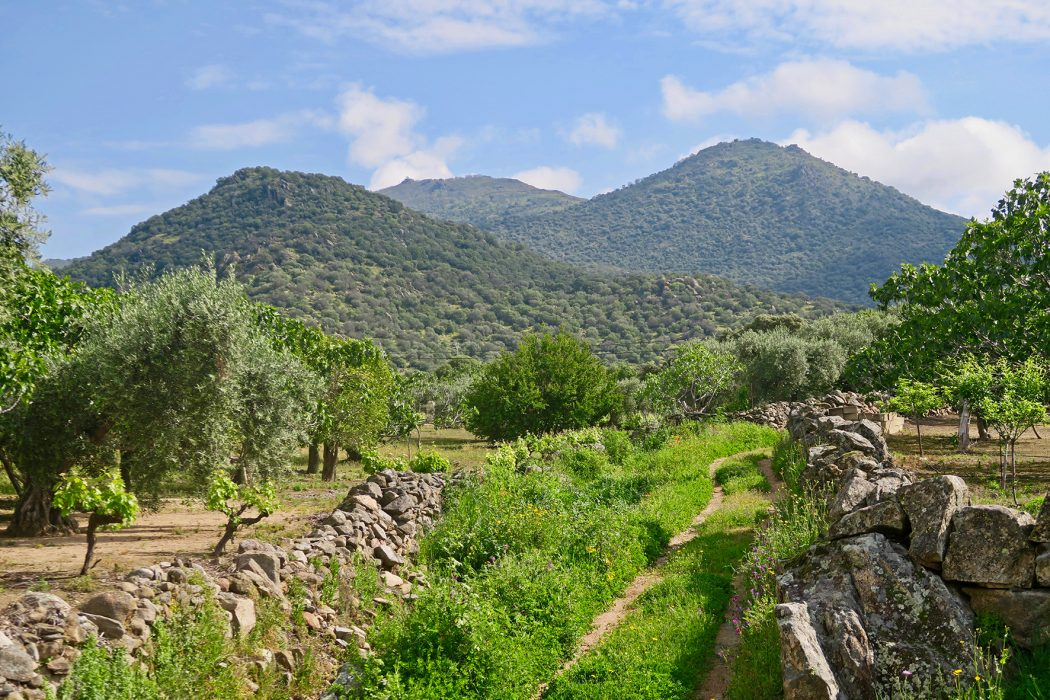 Cancho Blanco and Cerro San Cristobal in Extremadura