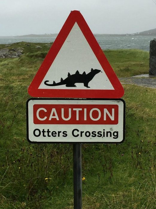 Scary Scottish otters.