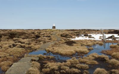 Summit bog on the Cheviot