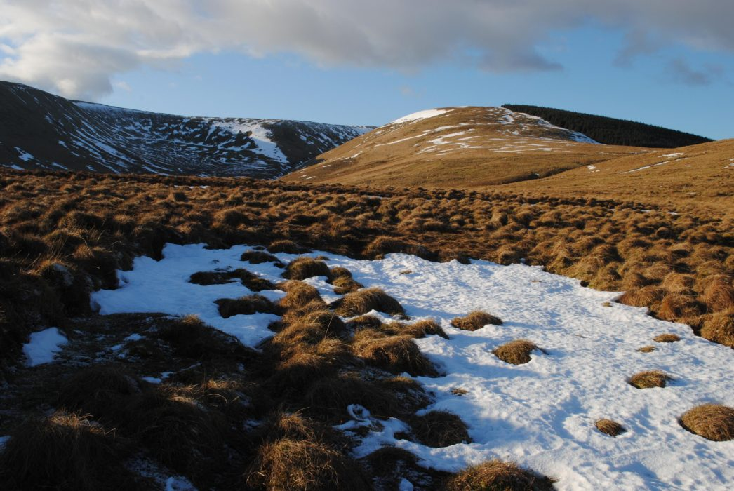 Queen's Mire below Cauldcleuch Head