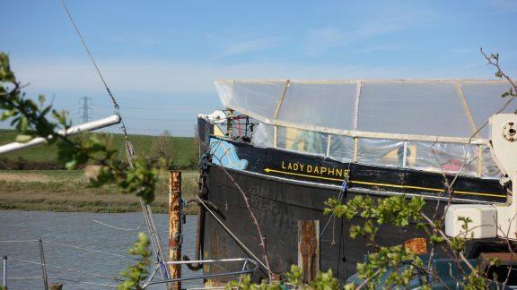 Lady Daphne, Oare Creek