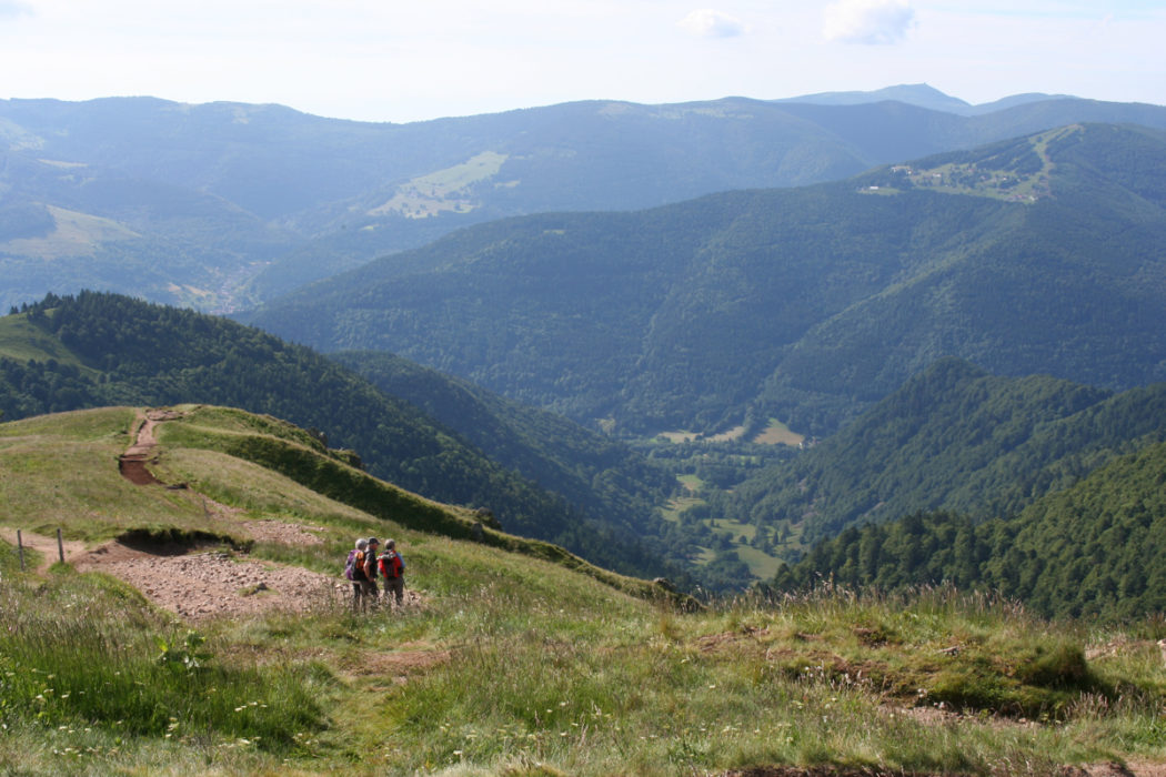 Descent From Le Hohneck Vosges Gr5