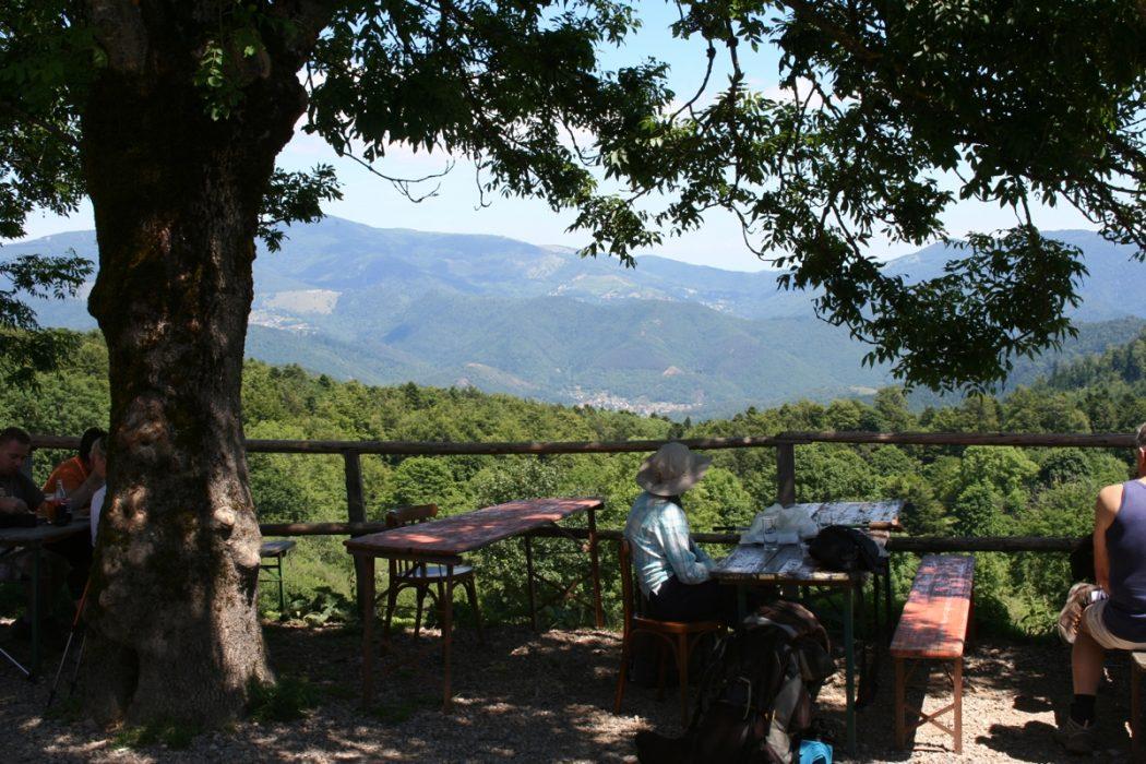 Coffee On The Terrace Belacker Farm Gr5