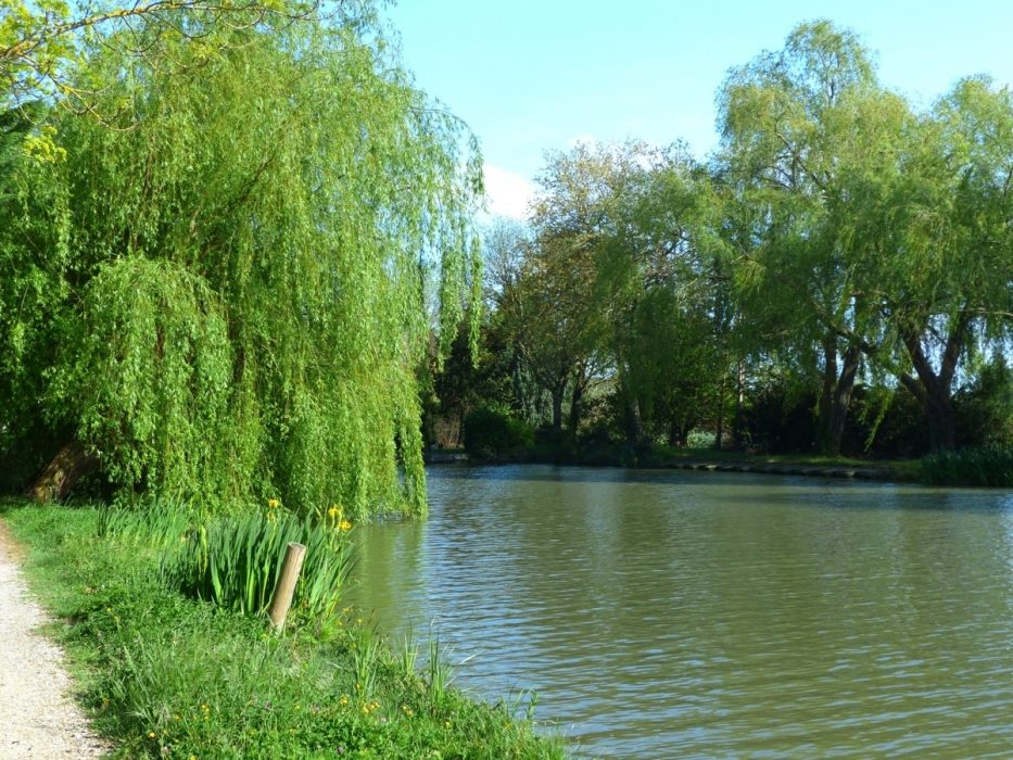 The Canal Is Tranquil For Most Of Its Length