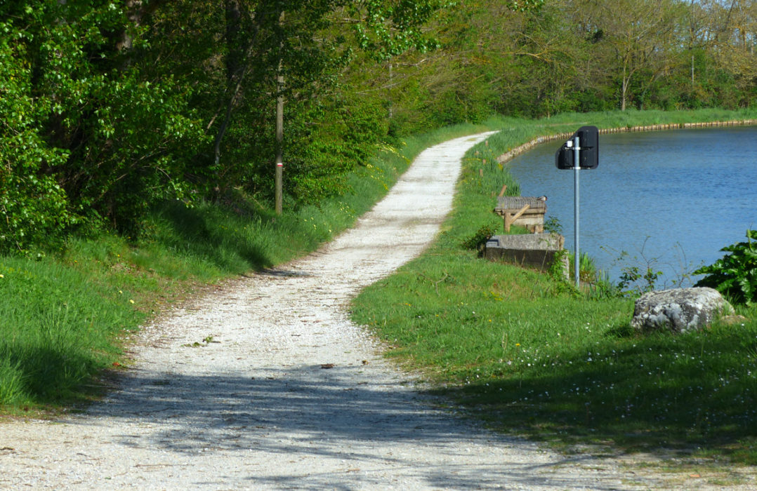 The Path Varies In Quality