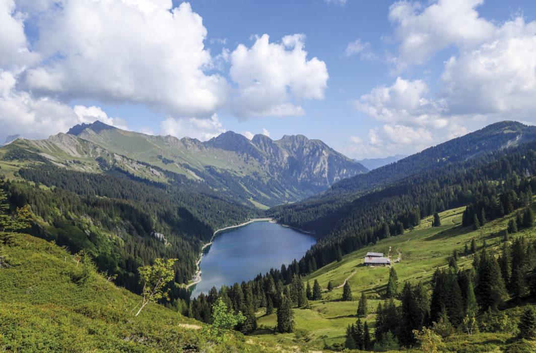 Above Lac De L Hongrin
