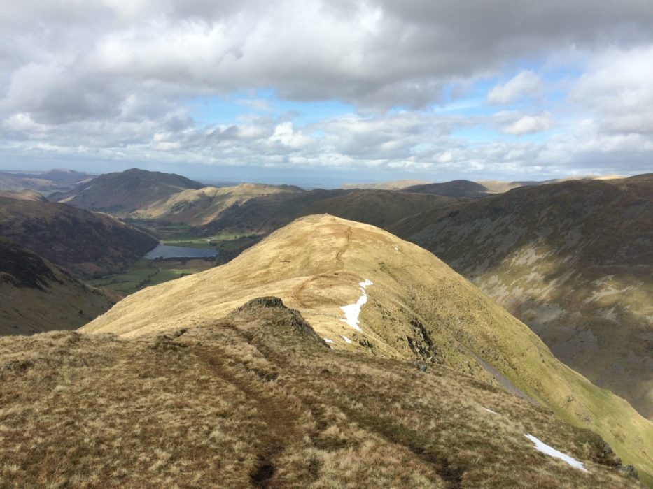 The Grassy Ridge Of  Red  Pike