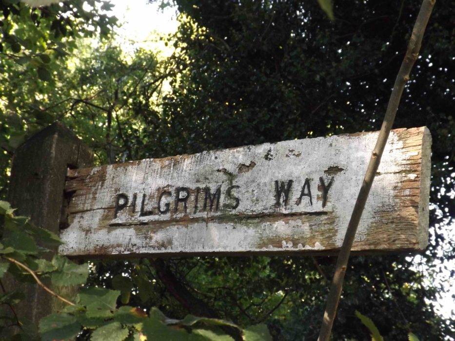 Pilgrims  Way Sign At  Chaldon In  Surrey