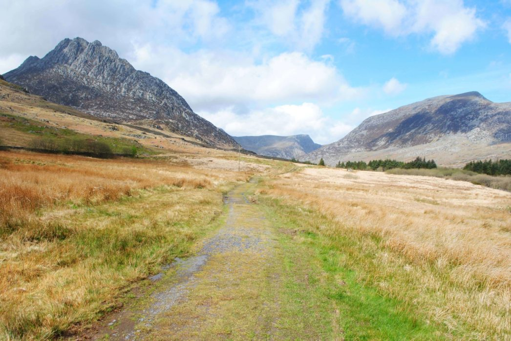 Tryfan And  Pen  Yr  Ole  Wen On The Route Through The  Ogwen  Valley
