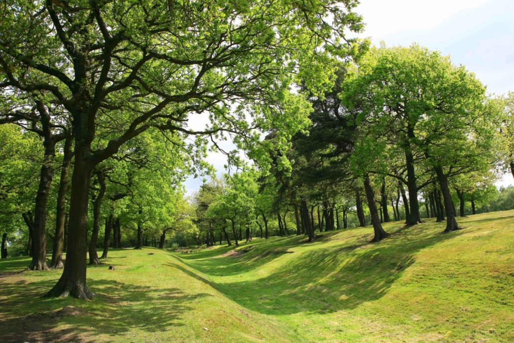 Antonine  Wall Near  Falkirk