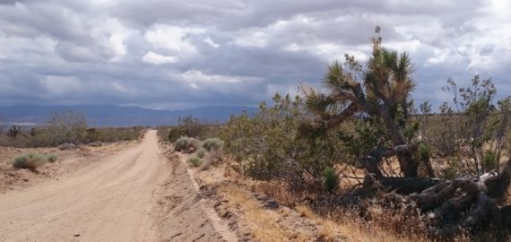 Mojave Desert  Hiking The  Pct