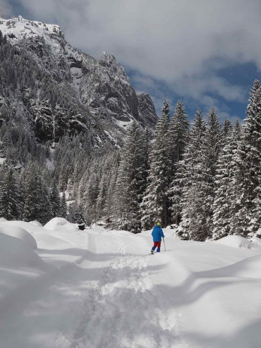 Snow In  Kandersteg