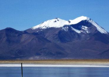 Flamingoes In  Chile  Salar De  Surire