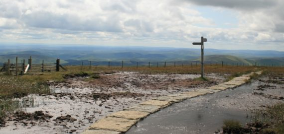 Pennine  Way Spur To  Cheviot Summit