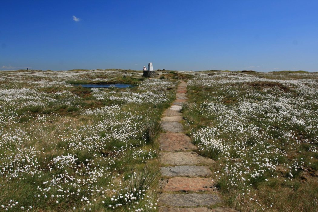 Summit  Of  Black  Hill On The  Pennine  Way