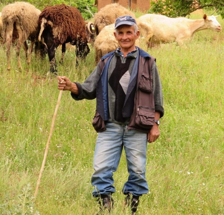 Shepherd  Northern  Greece