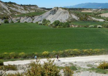 Camino Aragon