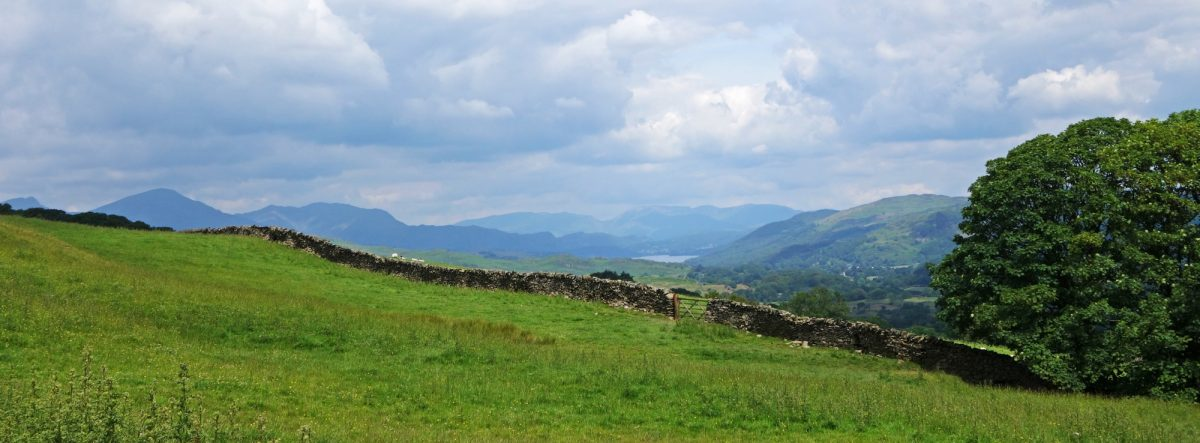 Looking Towards  Coniston Fells And  Lake