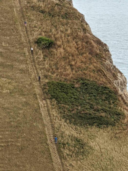 St Aldhelms Head on the South West Coast Path