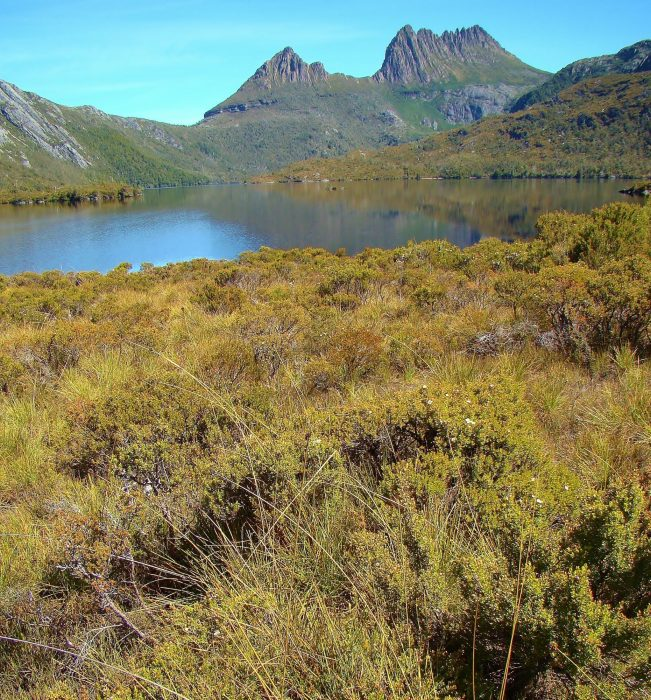 Stage 1 alternative start The distinctive profile of Cradle Mountain with Dove Lake in the foreground