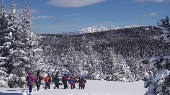 Winter snows and time for the raquettes to come out here near Font Romeu in the Pyrenees Orientales