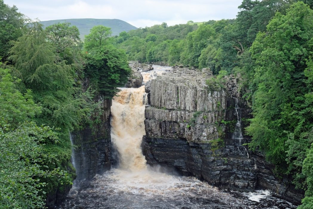 PW 12 High Force