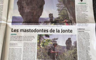 Article from Midi Libre