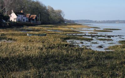 The Orwell estuary just east of Pin Mill