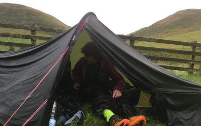 Midge inspection in the tent