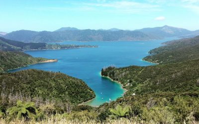Queens Charlotte track