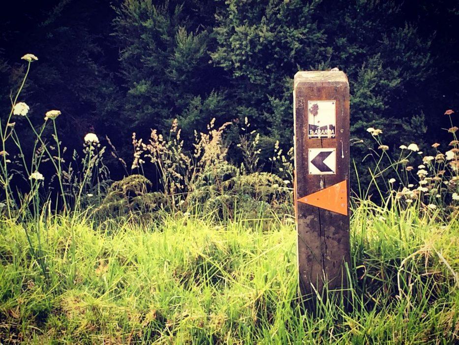 Te Araroa trail sign
