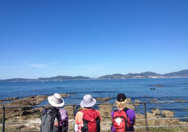 A Spotlight on: CaminoWays.com