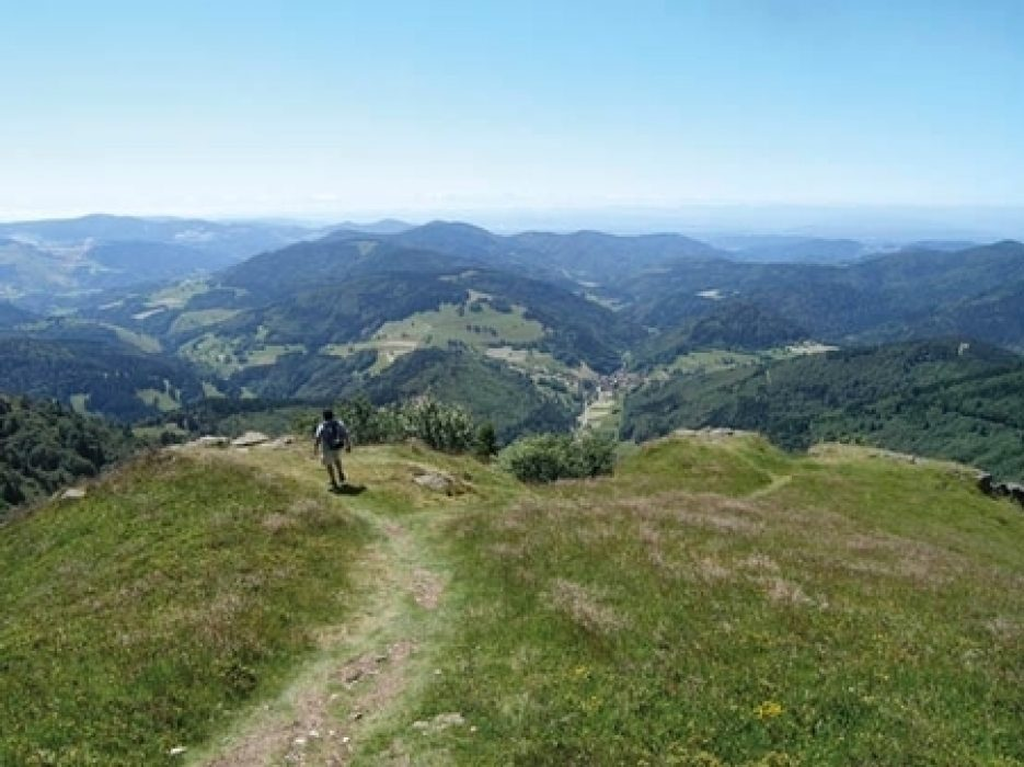 Hiking And Biking In Germanys Black Forest