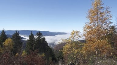 The Westweg in Germany's Black Forest