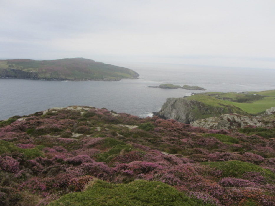 View Across The Sound Walk 1
