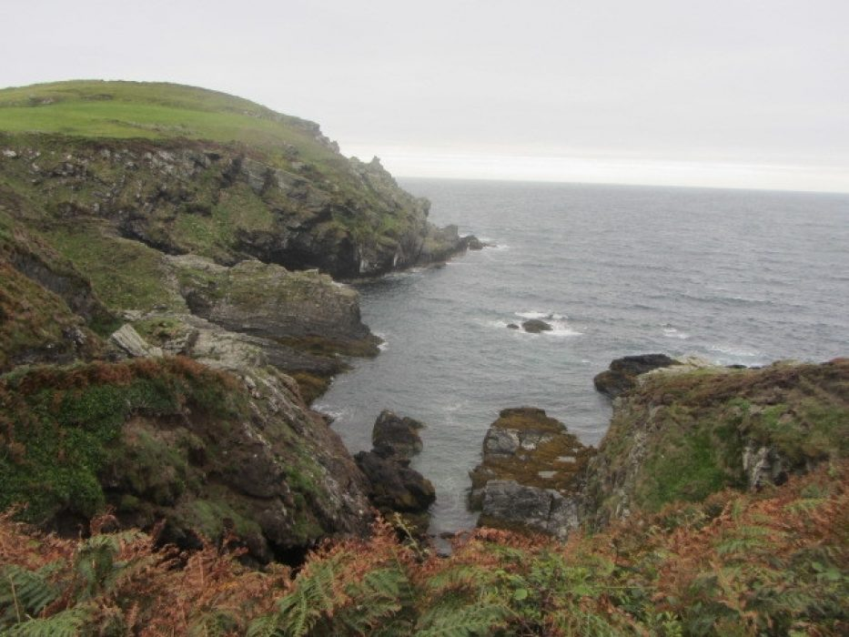 Sea Cliffs Near The Sound: Walk 1