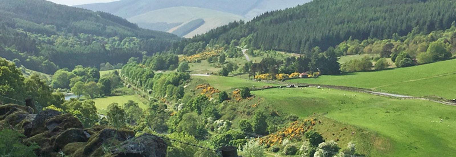 The Upper Tweed Valley