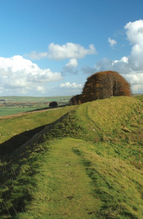 Lambourn Way Valley North Wessex Downs