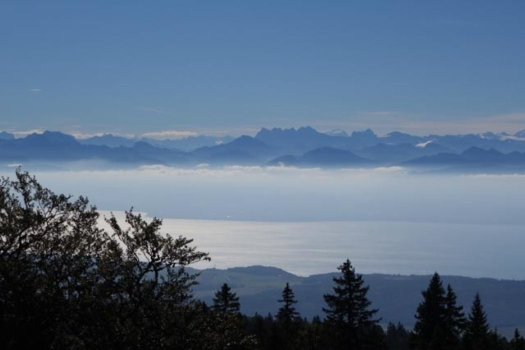 Mont Blanc from the Jura