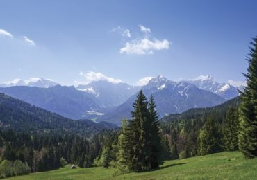 A quick guide to Slovenian, for mountain bikers