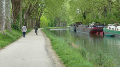 The history of the Cathars along the Canal du Midi