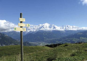 Wildlife spotting in the Haute Savoie