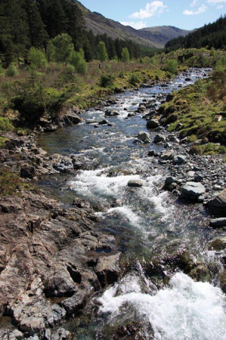 Ennerdale shrub lined river
