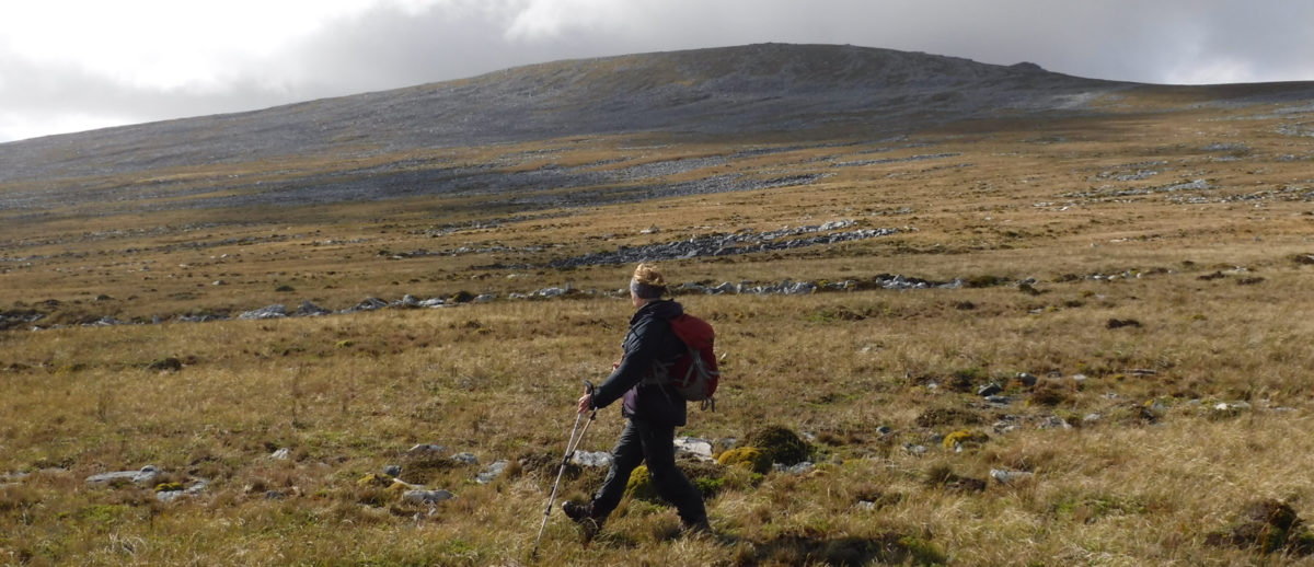 Mt Usborne Highest Point In The Falklands Is A Long Whaleback Mountain