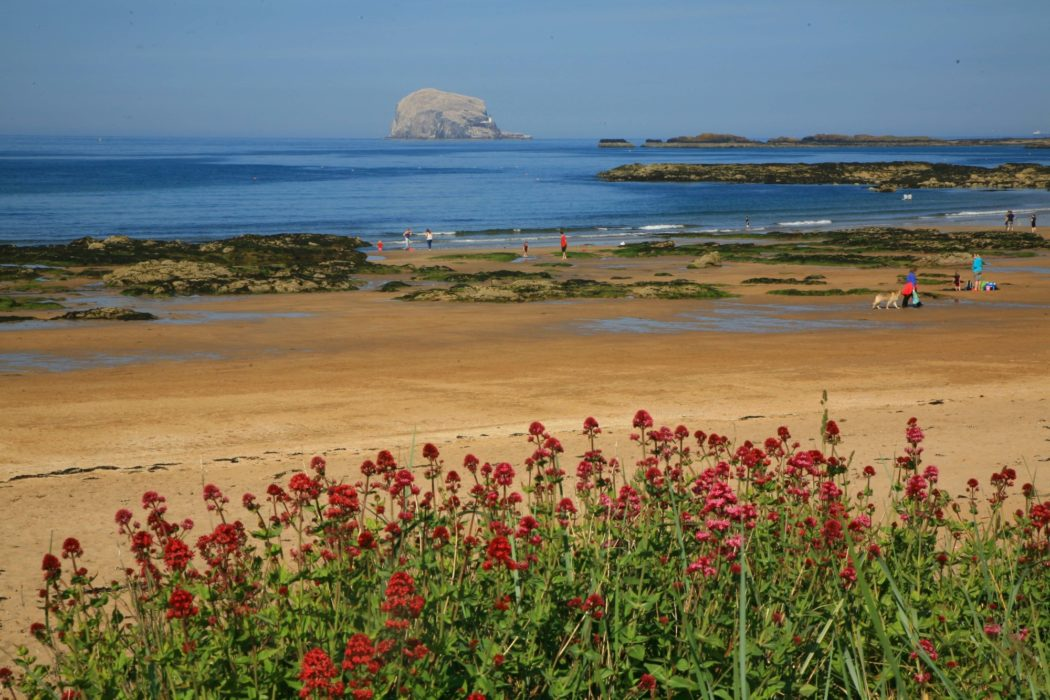 Bass Rock From Across The Sands